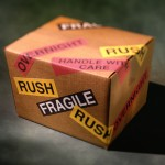 Fragile cargo - peace of mind with SFS